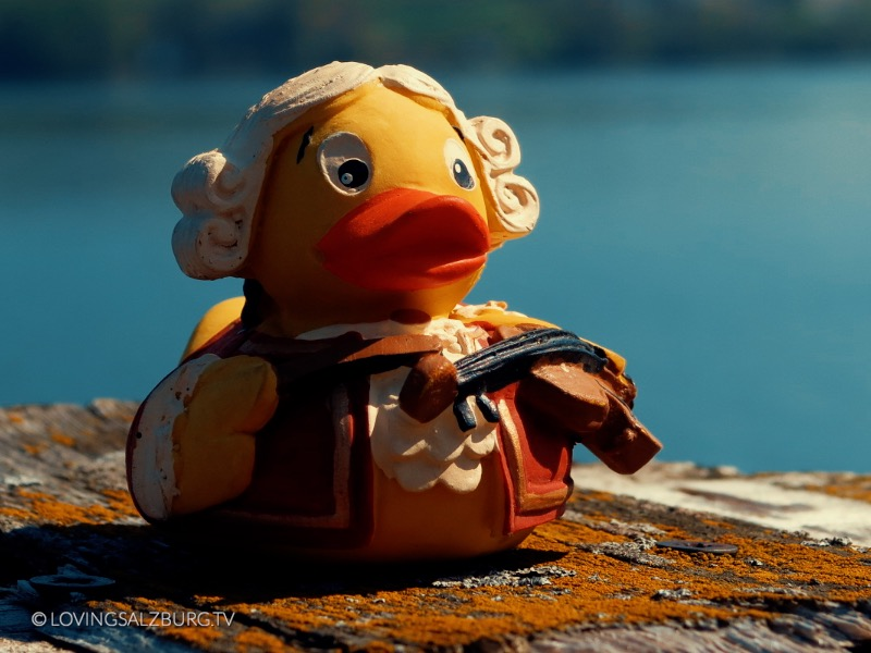 loving Salzburg TV | Austro Ducks